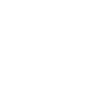 The logo of Homewizard