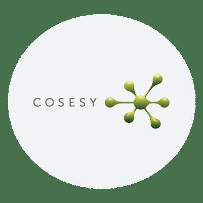 The logo of Cosesy